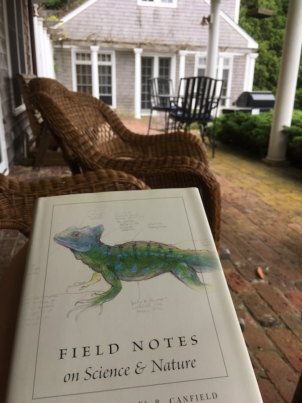 "image of the cover of a book ""Naturalists Notebook"" with a lizard on it"